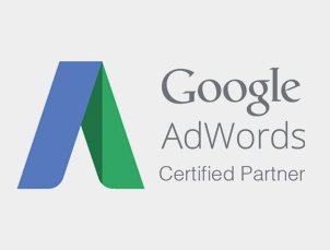 SynapseInteractive – Google AdWords Certified Partner