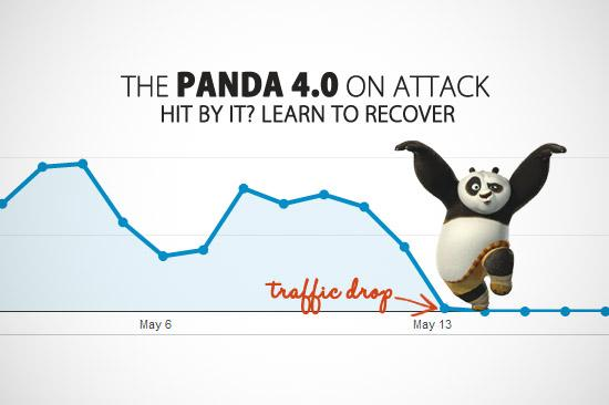 Google Panda Recovery Services